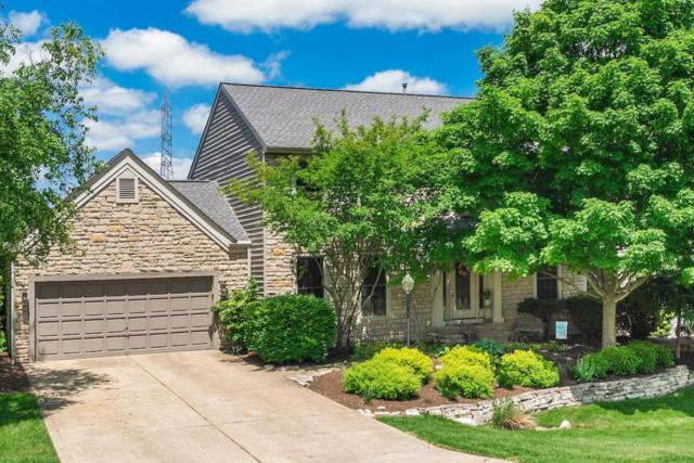 3799 Waverly Place Drive, Lewis Center, OH 43035 (MLS #218018019) :: Signature Real Estate