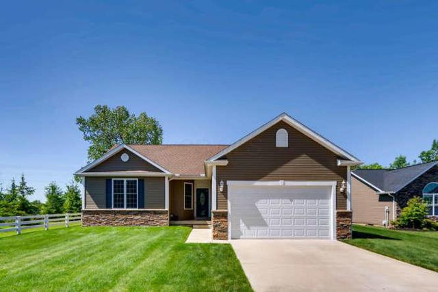 201 Bottecchia Boulevard, Johnstown, OH 43031 (MLS #218018255) :: The Clark Group @ ERA Real Solutions Realty