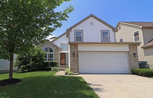 9247 Windy Creek Drive, Columbus, OH 43240 (MLS #218018610) :: Exp Realty