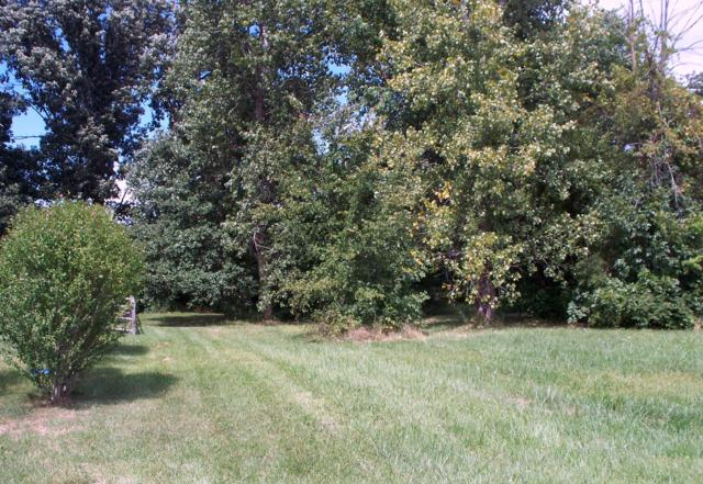 583 Church View Court, Delaware, OH 43015 (MLS #218019396) :: The Mike Laemmle Team Realty