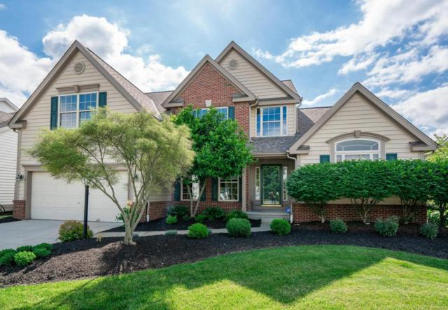 7231 Scioto Chase Boulevard, Powell, OH 43065 (MLS #218019885) :: Signature Real Estate