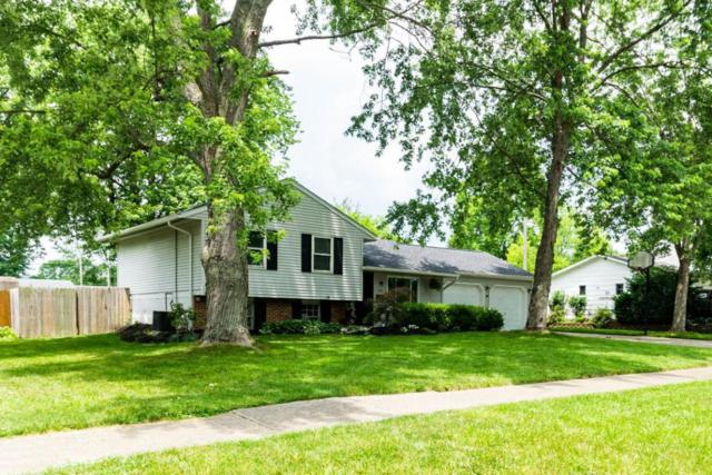 127 Wood Street, Westerville, OH 43081 (MLS #218019890) :: Exp Realty