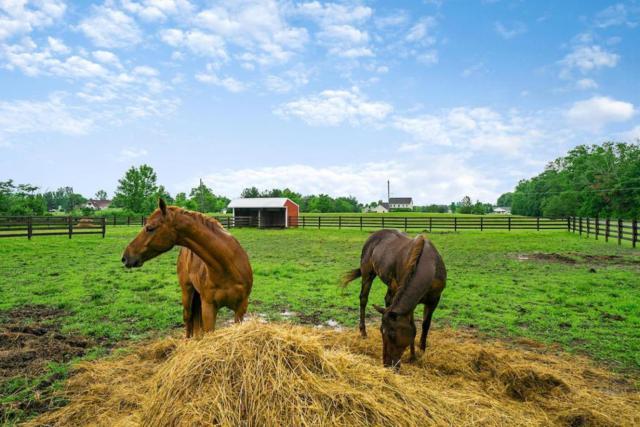 9180 Ketch Road, Plain City, OH 43064 (MLS #218020098) :: Signature Real Estate