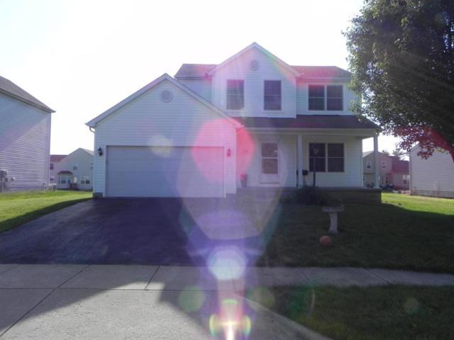 443 Vanderbuilt Street, Pickerington, OH 43147 (MLS #218020557) :: Exp Realty
