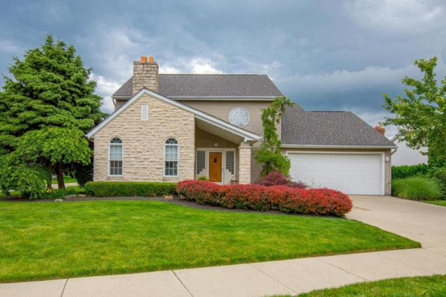 5018 Paula Court, Columbus, OH 43220 (MLS #218020596) :: Susanne Casey & Associates