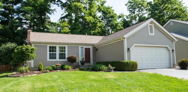 8414 Papillon Avenue, Reynoldsburg, OH 43068 (MLS #218021855) :: Signature Real Estate