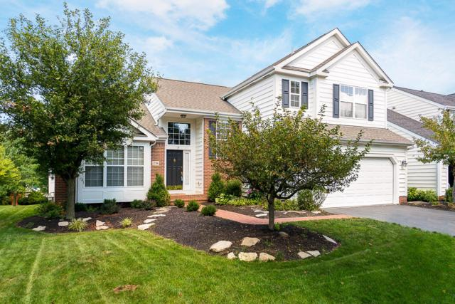 236 Chasely Circle, Powell, OH 43065 (MLS #218022160) :: RE/MAX ONE