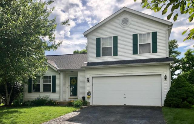 161 Blue Spruce Court, Delaware, OH 43015 (MLS #218022710) :: Signature Real Estate
