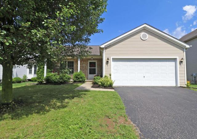 390 Wheatfield Drive, Delaware, OH 43015 (MLS #218022862) :: Signature Real Estate