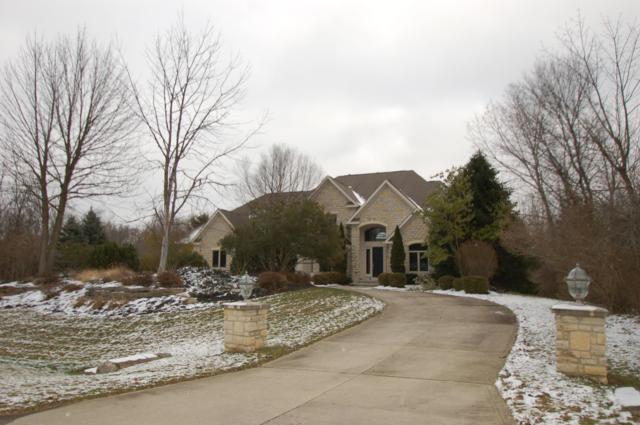 9787 Erin Woods Drive, Dublin, OH 43017 (MLS #218024647) :: Berkshire Hathaway HomeServices Crager Tobin Real Estate