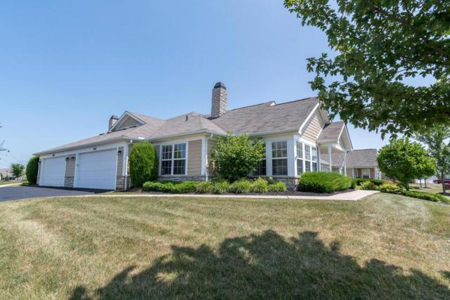 7047 Limerick Lane, Powell, OH 43065 (MLS #218025027) :: Berkshire Hathaway HomeServices Crager Tobin Real Estate