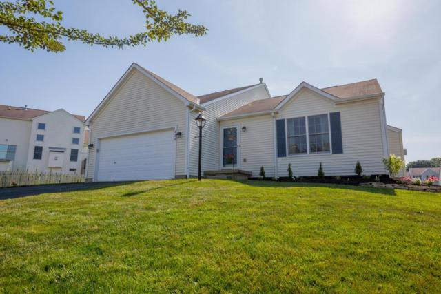 420 Furman Street, Pickerington, OH 43147 (MLS #218025577) :: Signature Real Estate