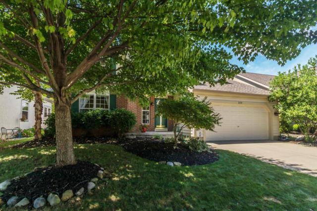 209 Bluestone Court, Westerville, OH 43081 (MLS #218026625) :: Berkshire Hathaway HomeServices Crager Tobin Real Estate