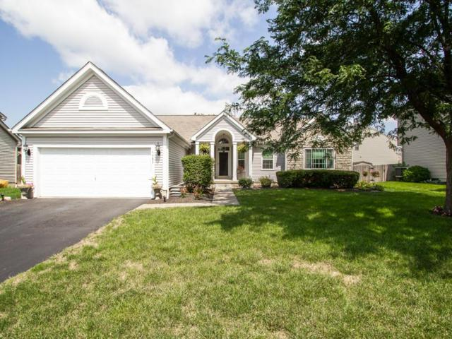 5982 Pinto Pass Drive, Hilliard, OH 43026 (MLS #218026644) :: RE/MAX ONE