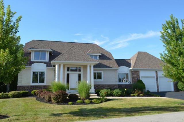 1466 Commonwealth Drive, Blacklick, OH 43004 (MLS #218026695) :: e-Merge Real Estate