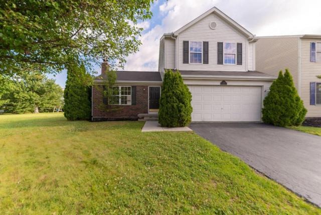 7714 Solomen Run Drive, Blacklick, OH 43004 (MLS #218027088) :: The Mike Laemmle Team Realty