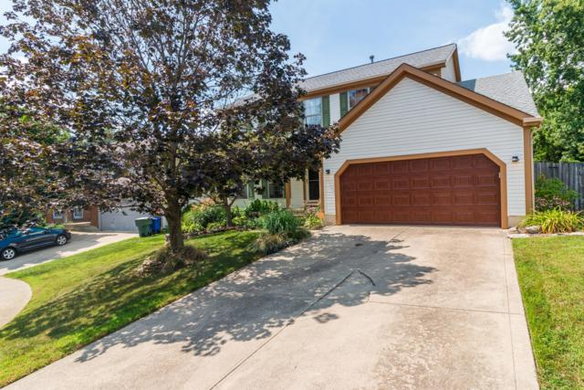 3325 Winged Foot Court, Pickerington, OH 43147 (MLS #218029605) :: Shannon Grimm & Partners