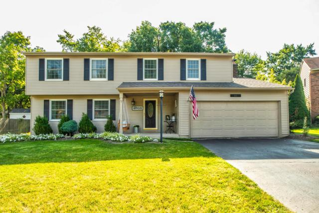 66 Haddam Place E, Westerville, OH 43081 (MLS #218029903) :: Shannon Grimm & Partners
