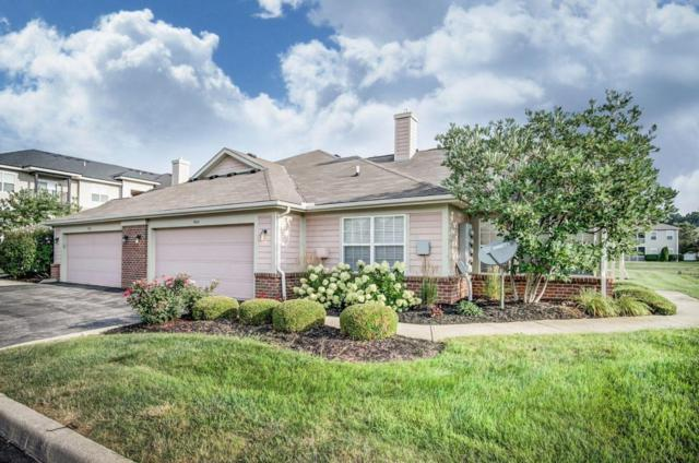 5410 Tawny Lane, Westerville, OH 43081 (MLS #218030185) :: e-Merge Real Estate