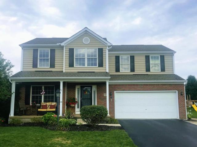 7245 Blue Holly Drive, Lewis Center, OH 43035 (MLS #218030612) :: Exp Realty