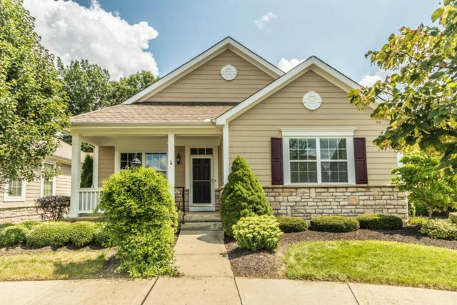 5429 Langwell Drive, Westerville, OH 43082 (MLS #218030820) :: The Columbus Home Team