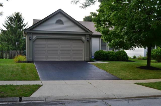 4948 Hidden View Court, Hilliard, OH 43026 (MLS #218031199) :: CARLETON REALTY