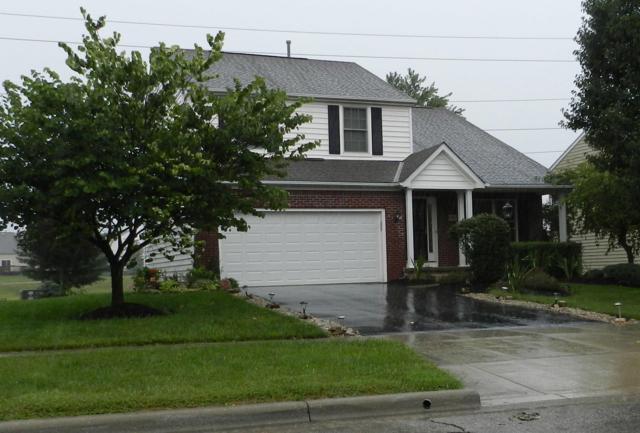 7417 Holderman Street, Lewis Center, OH 43035 (MLS #218031321) :: Signature Real Estate