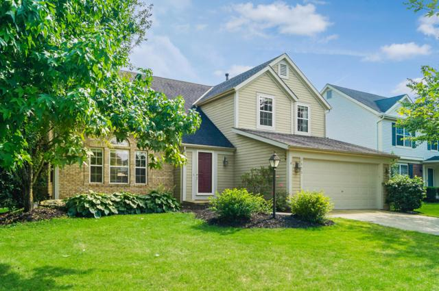 3853 Stonesthrow Lane, Hilliard, OH 43026 (MLS #218031503) :: The Mike Laemmle Team Realty