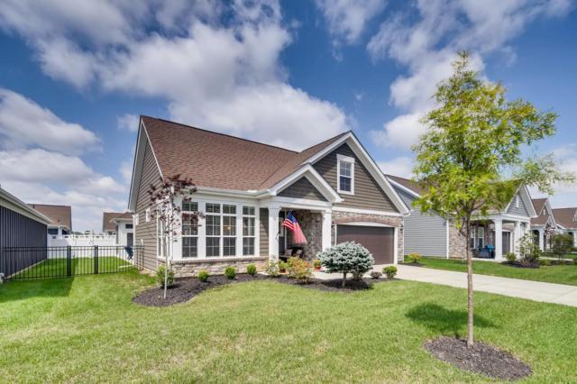 8136 Summitpoint Place, Lewis Center, OH 43035 (MLS #218031813) :: Signature Real Estate
