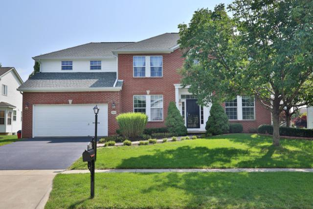 7611 Affirmed Court, Lewis Center, OH 43035 (MLS #218032149) :: RE/MAX ONE