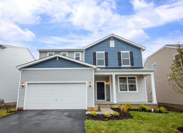 8693 Conestoga Valley Drive, Blacklick, OH 43004 (MLS #218032486) :: RE/MAX ONE