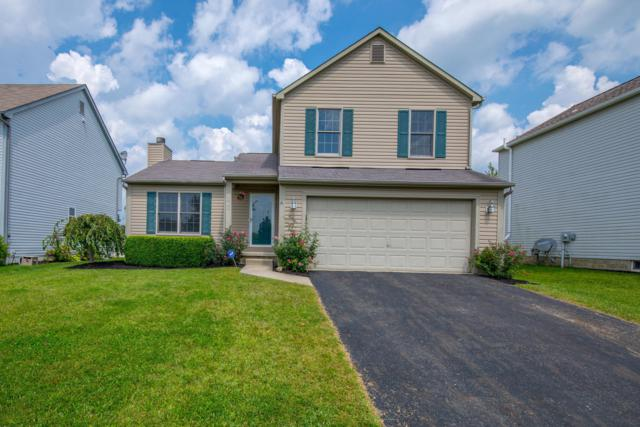 7902 Waggoner Run Drive, Blacklick, OH 43004 (MLS #218032670) :: The Mike Laemmle Team Realty