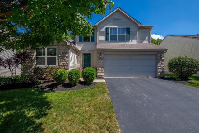 3010 Highwall Way, Columbus, OH 43221 (MLS #218032675) :: RE/MAX ONE