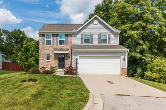 191 Brandy Mill Drive, Etna, OH 43062 (MLS #218033139) :: The Raines Group