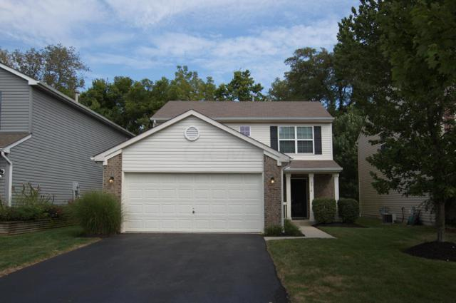 3918 Rosette Drive, Grove City, OH 43123 (MLS #218033860) :: The Mike Laemmle Team Realty