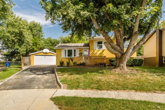 596 Oak Hollow Court, Columbus, OH 43228 (MLS #218034142) :: RE/MAX ONE