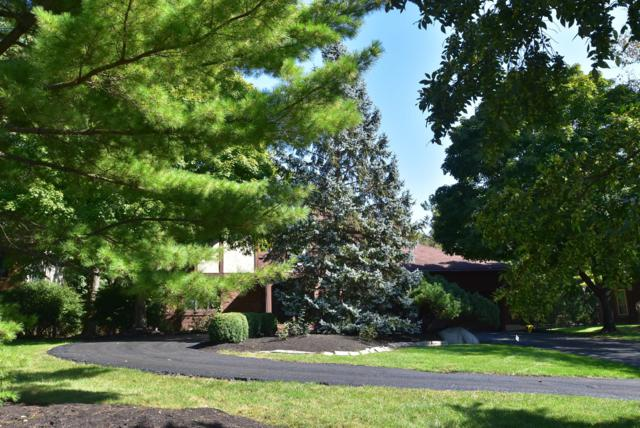 4300 Reed Road, Upper Arlington, OH 43220 (MLS #218036344) :: RE/MAX ONE