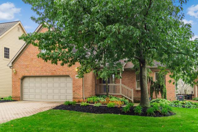 9077 Moors Place N, Dublin, OH 43017 (MLS #218036408) :: Brenner Property Group | KW Capital Partners