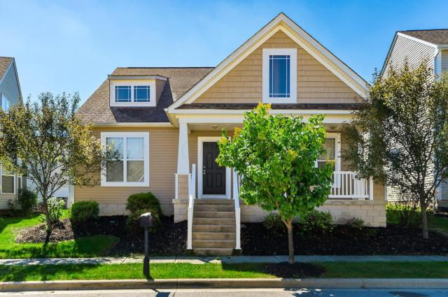 4474 Snowy Meadow Drive, Grove City, OH 43123 (MLS #218036503) :: Signature Real Estate