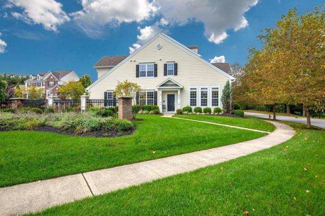 1009 Bluffway Drive, Columbus, OH 43235 (MLS #218037223) :: RE/MAX ONE