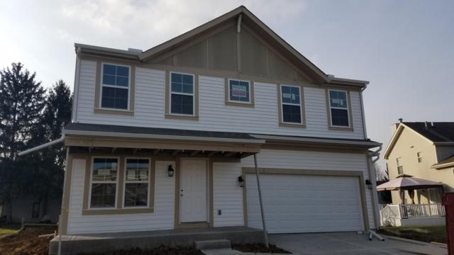 5551 Levi Kramer Boulevard, Canal Winchester, OH 43110 (MLS #218037224) :: Signature Real Estate