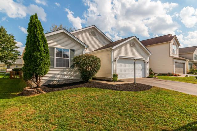 1104 Greeley Drive, Galloway, OH 43119 (MLS #218038070) :: Exp Realty