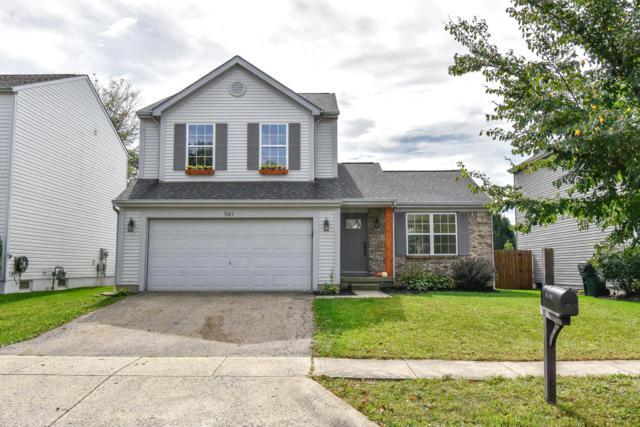 541 Lamesa Drive, Blacklick, OH 43004 (MLS #218038365) :: Exp Realty
