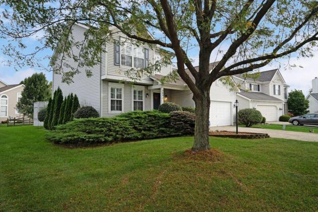 562 Lake Knoll Court, Columbus, OH 43230 (MLS #218038514) :: RE/MAX ONE