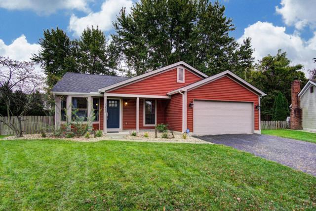 353 Greenwold Court, Columbus, OH 43235 (MLS #218038877) :: Exp Realty