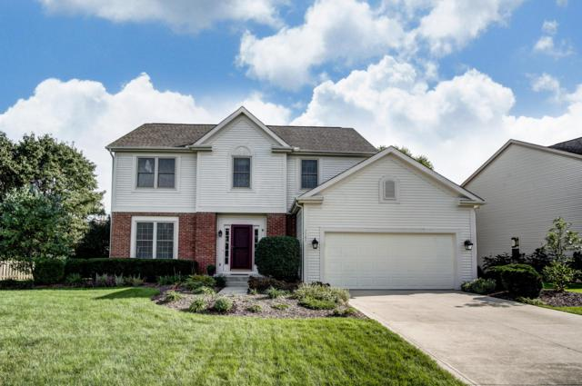 7787 Holderman Street, Lewis Center, OH 43035 (MLS #218039203) :: Keller Williams Excel