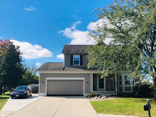 3583 Ziner Court, Grove City, OH 43123 (MLS #218039414) :: Signature Real Estate