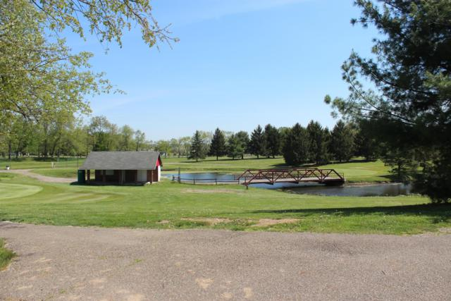 4600 Ridgely Tract Road SE, Newark, OH 43056 (MLS #218040901) :: The Raines Group