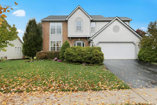 5196 Fairlane Drive, Powell, OH 43065 (MLS #218041112) :: Exp Realty
