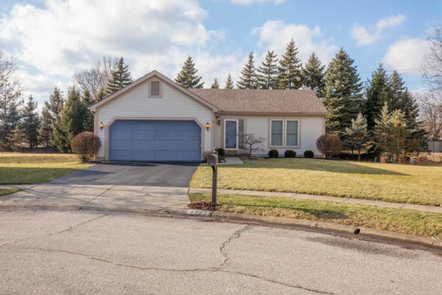 4771 Big Walnutview Court, Columbus, OH 43230 (MLS #218042330) :: Shannon Grimm & Partners